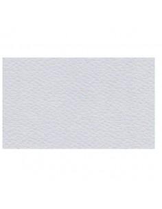 Papier Prisma 220g Grigio 50x70 Szary-5792