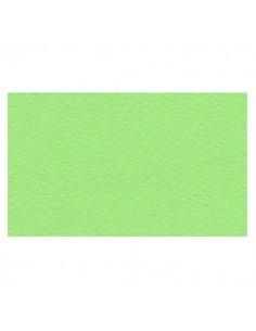 Papier Prisma 220g Pistacchio 50x70 pistacjowy -5806