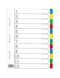 Przekładki do segregatora A4 12 kolorów  103-856