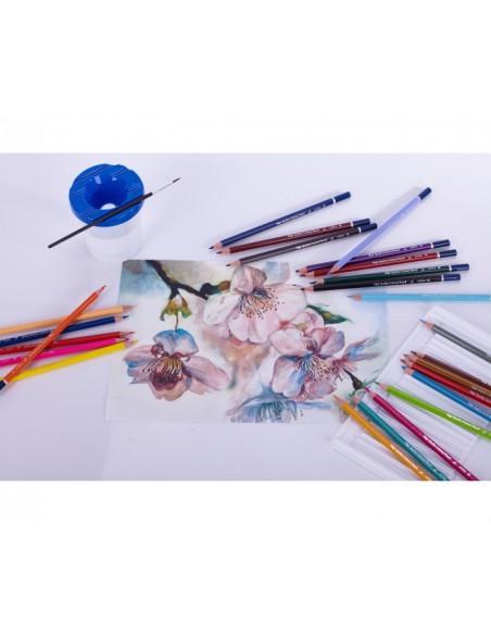Kredki ołówk. sześciokąt. akwarelowe 24 kol. ASTRA-3175